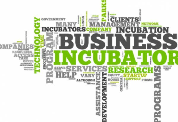 incubator afaceri