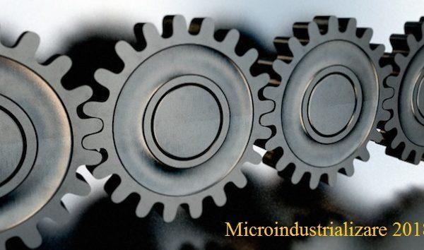 microindustrializare